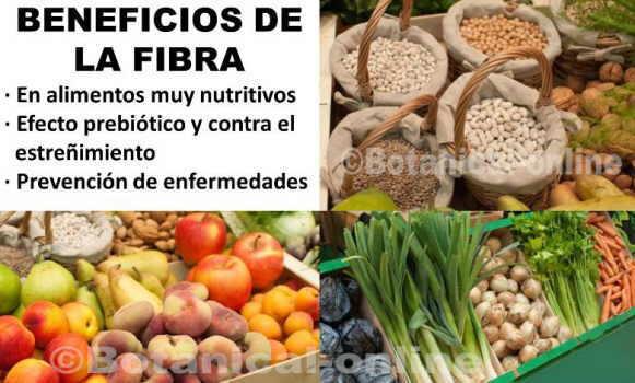 Beneficios de la fibra diet tica - Alimentos que tienen fibra ...