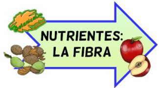 nutrientes fibra
