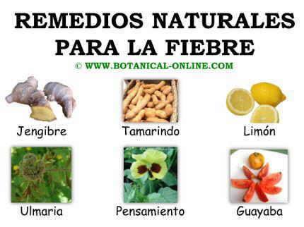 Remedios naturales para la fiebre
