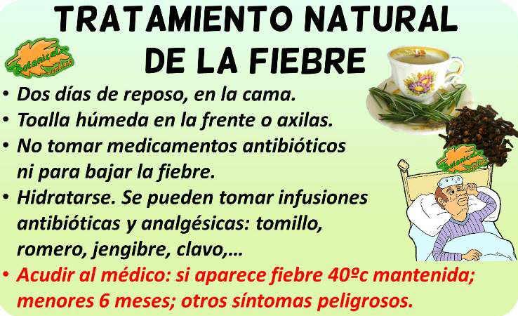 fiebre tratamiento natural