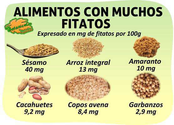 Alimentos ricos en fitatos - Alimentos naturales ricos en calcio ...