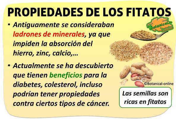 propiedades de los fitatos o acido fitico de los alimentos
