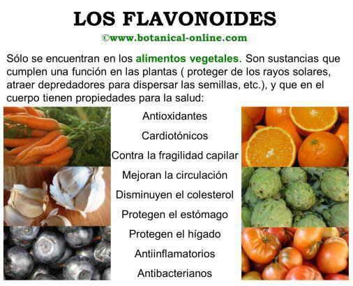 Propiedades de los flavonoides