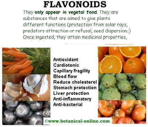flavonoids_properties.jpg