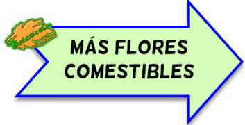 mas flores comestibles