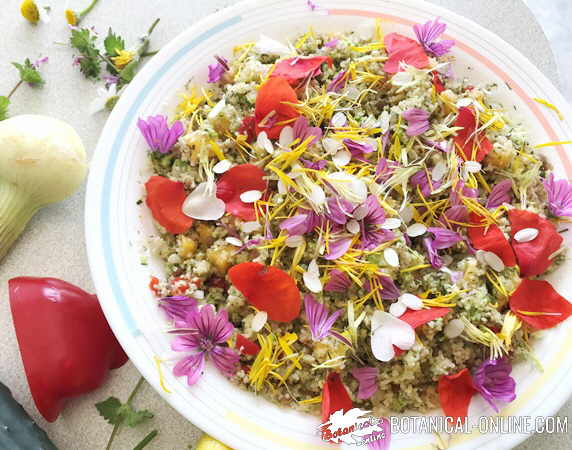 ensalada flores comestibles