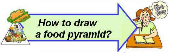 how to draw a food pyramid