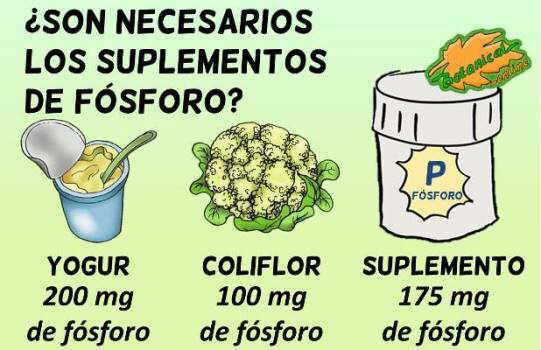 cantidad de fosforo alimentos ricos suplementos