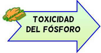 toxicidad del fósforo
