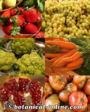 Frutas anticancer ricas en polifenoles