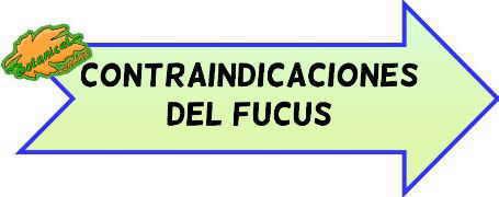 contraindicaciones del fucus