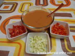 Plato de gazpacho