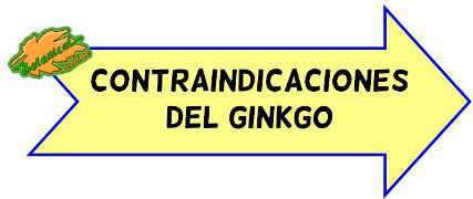 contraindicaciones del ginkgo