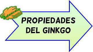 propiedades medicinales del ginkgo