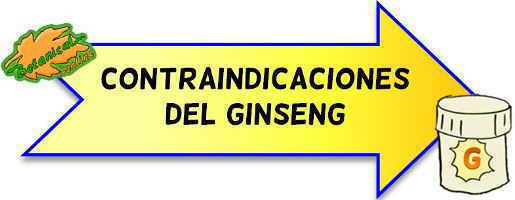 contraindicaciones del ginseng