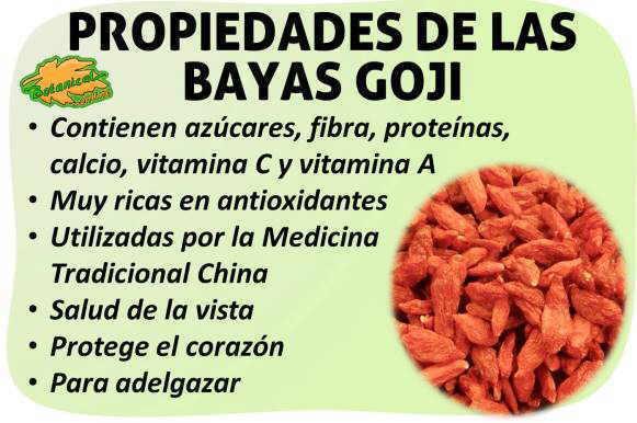 Propiedades medicinales de las bayas goji