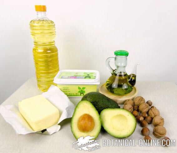 aceite grasas vegetales