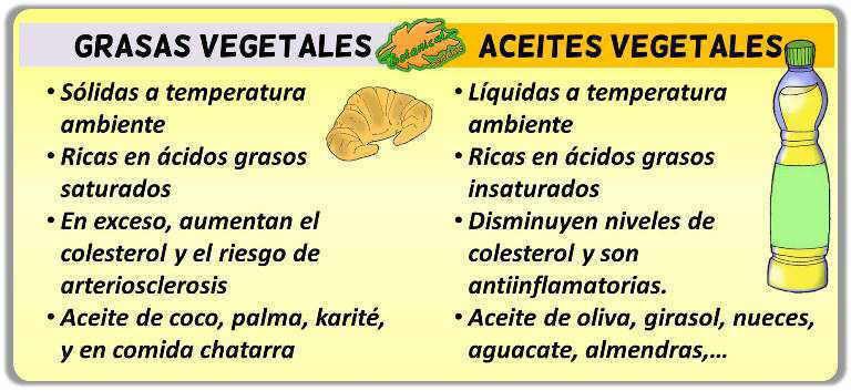 diferencias aceites de origen vegetal y grasas vegetales caracteristicas