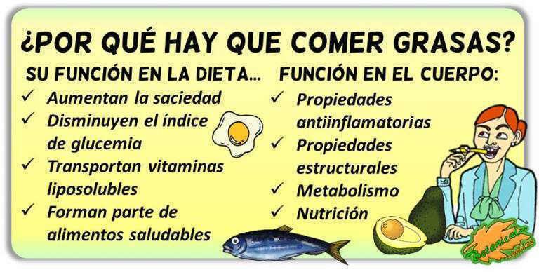 importancia funciones beneficios de comer grasas