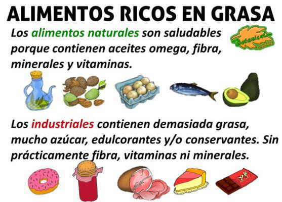 grasas malas real food paleo alimentos aceites