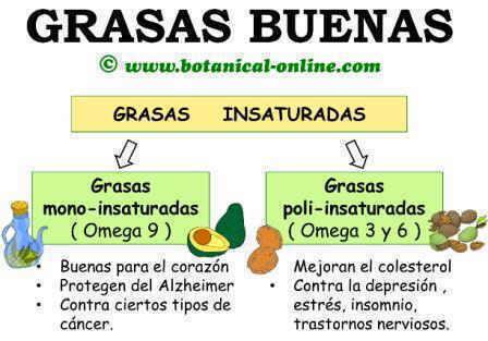 Grasas sanas insaturadas o omega 3 6 9
