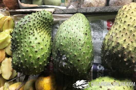 Guanábana o graviola expuesta en un mercado