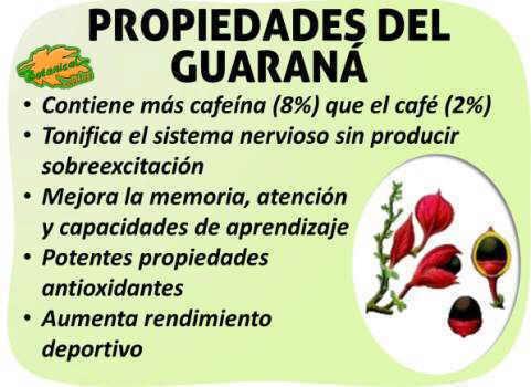 propiedades medicinales guarana
