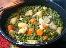 Peas with vegetables