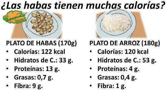 Calorías o kcal que contienen las habas, valor nutricional