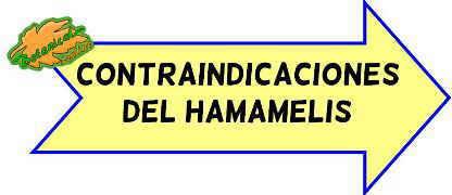 contraindicaciones del hamamelis