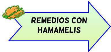 remedios con hamamelis