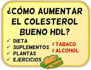 remedios aumentar hdl colesterol