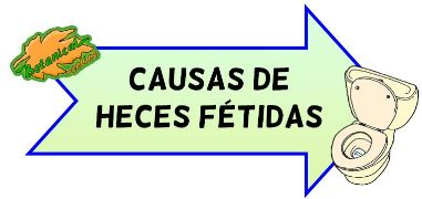 causas de heces fétidas