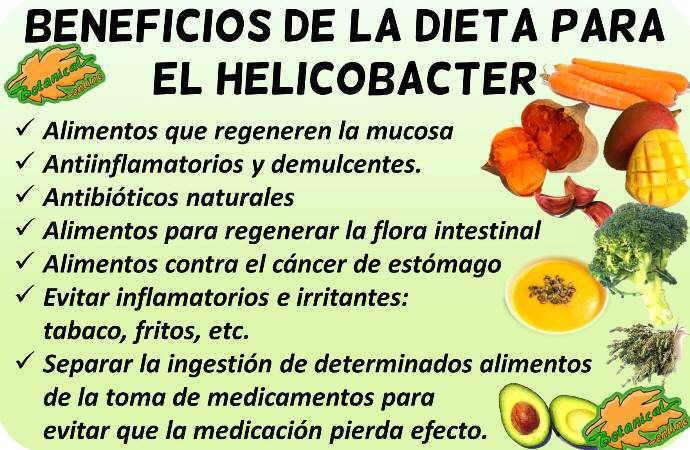 Alimentos para erradicar helicobacter pylori