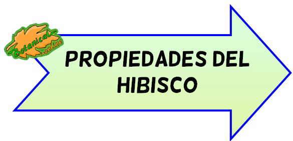 propiedades del hibisco