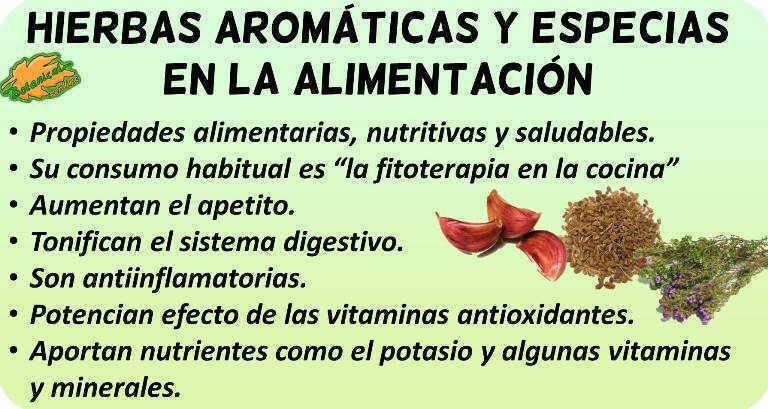 propiedades alimentarias hierbas aromaticas y especias