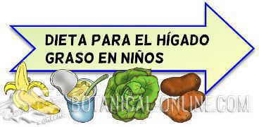 Tratamiento natural h gado graso en ni os - Alimentos para el higado graso ...