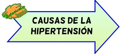 causas de hipertension