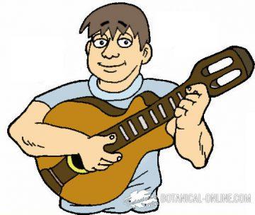 dibujo musico guitarra española