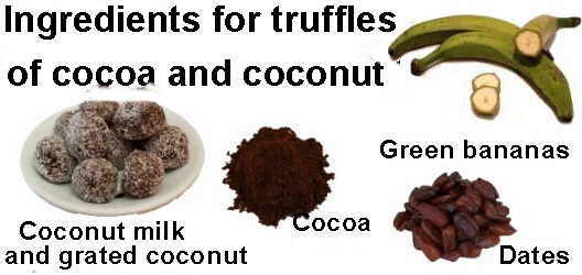 Main ingredients for the recipe of truffles cocoa and coconut
