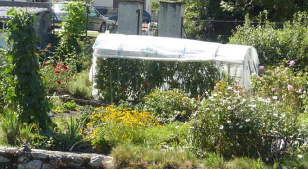 hueeto y jardin familiar