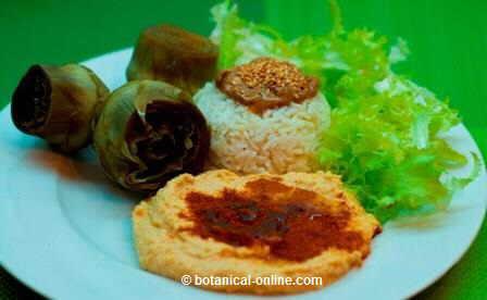 Hummus rico en proteínas