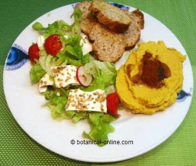 Hummus plato combinado con pan