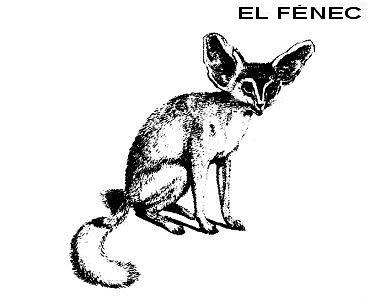 Fénec