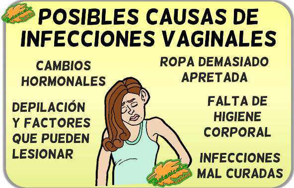 causas diagnostico infeccion vaginal candidiasis