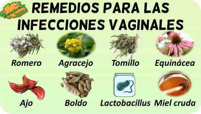 remedios naturales caseros infecciones vaginales plantas para tratamiento natural