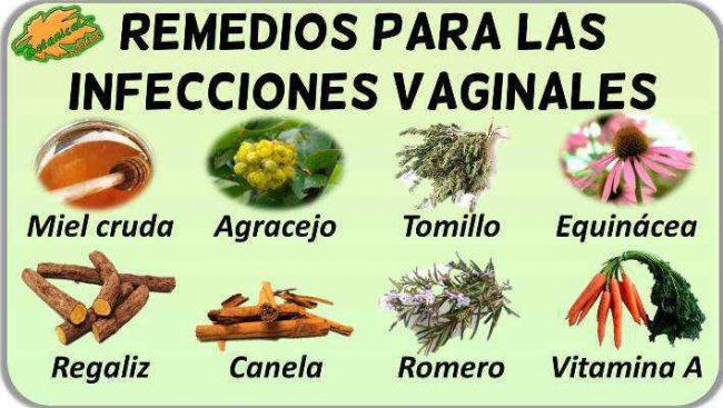 remedios naturales caseros infecciones vaginal plantas para tratamiento natural