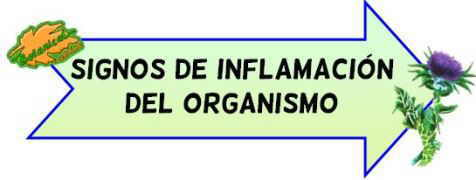 sintomas inflamacion organismo