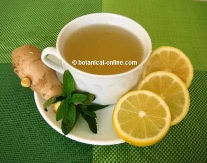 lemon mint ginger tea