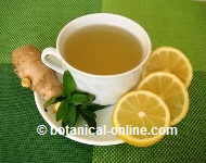 Digestive infusion of ginger, lemon and mint